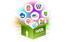 best web designing training institute